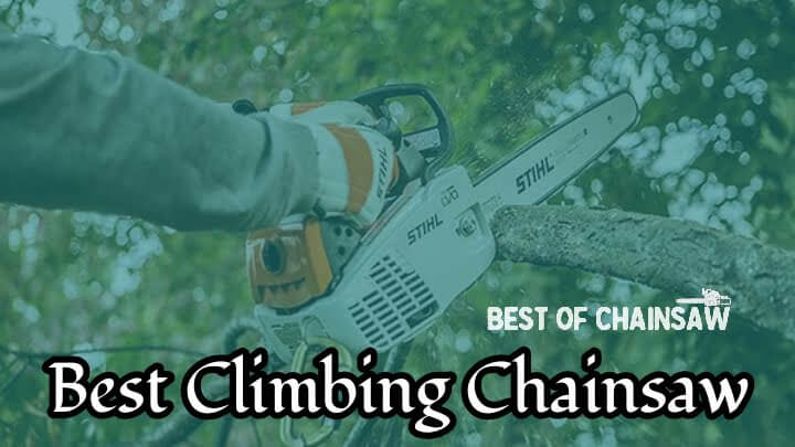 best climbing chainsaw