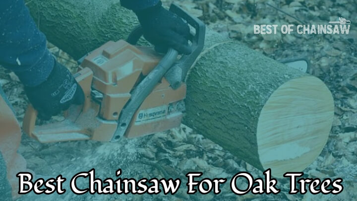 best chainsaw for cutting oak trees